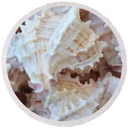Conches Round Beach Towel