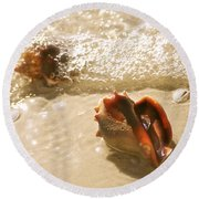 Conchs In Surf 2 Antique Round Beach Towel