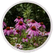 Cone Flower And Bee Round Beach Towel