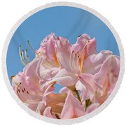 Confectioners Pink Round Beach Towel