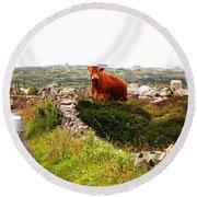 Connemara Cow Round Beach Towel