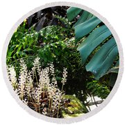 Conservatory Leaves Round Beach Towel