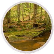 Cook Forest Rocks And Roots Round Beach Towel