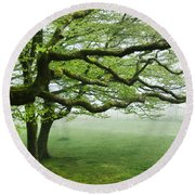 Cool Misty Day At Blackbury Camp Round Beach Towel