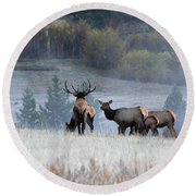 Cool Misty Morning Round Beach Towel