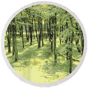 Copse Of Trees Sunlight Round Beach Towel