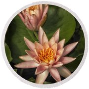 Coral Pink Water Lilies Round Beach Towel