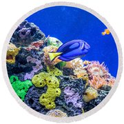 Coral Reef Round Beach Towel