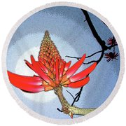 Coral Tree Round Beach Towel by Ben and Raisa Gertsberg