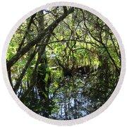 Corkscrew Swamp 3 Round Beach Towel
