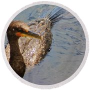Cormorant After A Swim Round Beach Towel