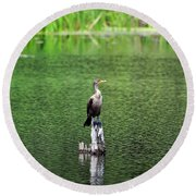 Cormorant Chilling Round Beach Towel