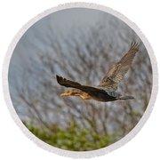 Cormorant On Wings Round Beach Towel