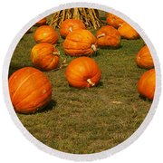 Corn Plants With Pumpkins In A Field Round Beach Towel
