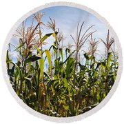 Corn Production Round Beach Towel