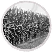 Cornfield Black And White Round Beach Towel