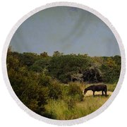 Corolla Pony Round Beach Towel