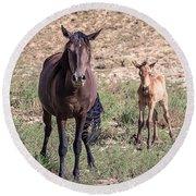 Cortez Colorado Mustangs Round Beach Towel