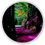 Cosmic Energy Of A Redwood Forest On Mt Tamalpais Round Beach Towel