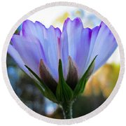 Cosmos Petals Up Round Beach Towel