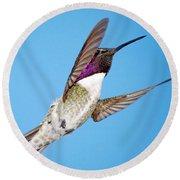 Costa's Hummingbird In Flight Round Beach Towel