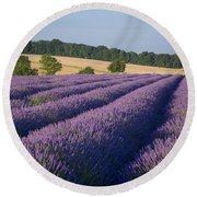 Cotswolds Lavender Round Beach Towel