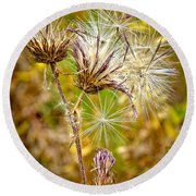 Cotten Grass Round Beach Towel