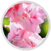Cotton Candy Gladiolus Round Beach Towel