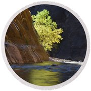 Cottonwood On The Virgin River Round Beach Towel