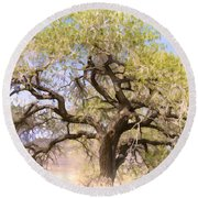 Cottonwood Tree Digital Painting Round Beach Towel