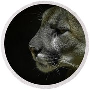 Cougar Round Beach Towel