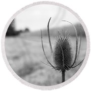 Country Fields Round Beach Towel