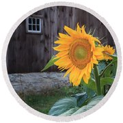 Country Flower Square Round Beach Towel