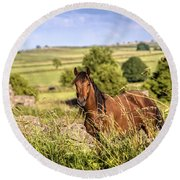 Countryside Horse Round Beach Towel