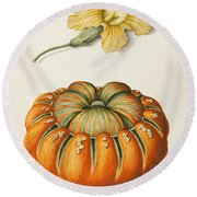 Courgette And A Pumpkin Round Beach Towel
