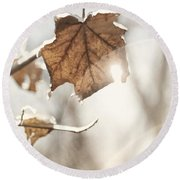 Covered With Ice Maple Leafe On A Sunny Day Round Beach Towel