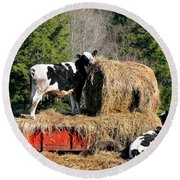 Cow Country Buffet Round Beach Towel