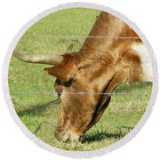 Cow Round Beach Towel