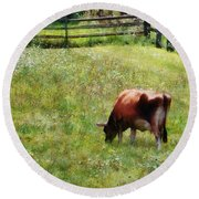 Cow Grazing In Pasture Round Beach Towel