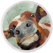 Cow's Eye View Round Beach Towel