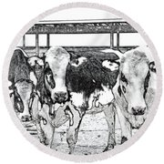 Cows Pencil Sketch Round Beach Towel