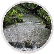 Coyaba River Gardens 6 Round Beach Towel