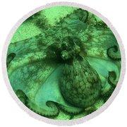 Cozumel Octopus Round Beach Towel