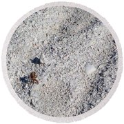 Crab And Footprint Round Beach Towel