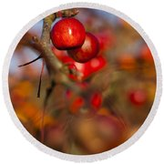 Crab Apple Bright Round Beach Towel