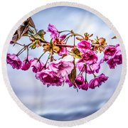 Crab Apple Tree Round Beach Towel