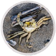 Crab With A Feather Round Beach Towel
