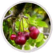Crabapple Hill Round Beach Towel