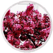 Crabapple Tree Blossoms Round Beach Towel