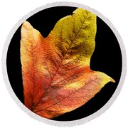 Cranberry Tree Leaf Isolated On White Round Beach Towel